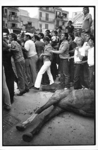 Celebrazione-di-San-Giusto.-Mussomeli-1981-327x500.jpg